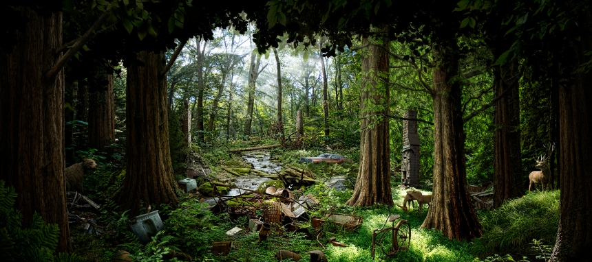 forest_ruins