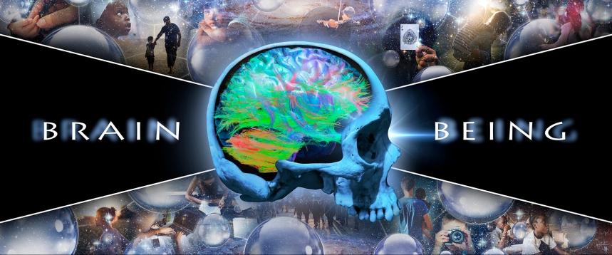 brain_v_being8